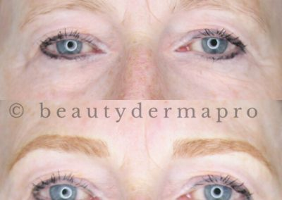 Permanent Makeup Microbladed Eyebrows Before & After